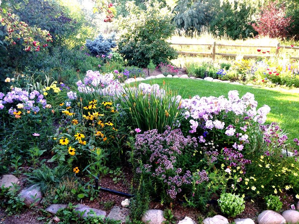 GardenIMG_0043