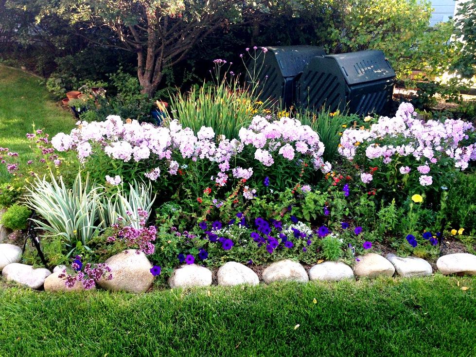 GardenIMG_0044