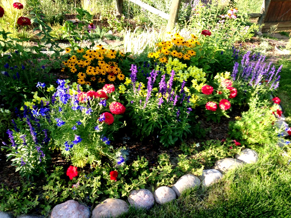 GardenIMG_0050