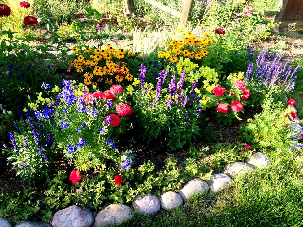 GardenIMG_0051