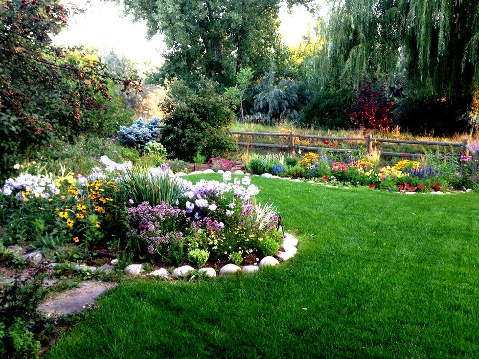 GardenIMG_0060