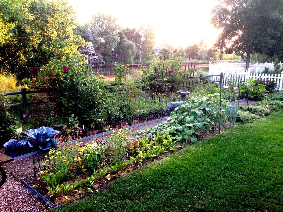 GardenIMG_0062