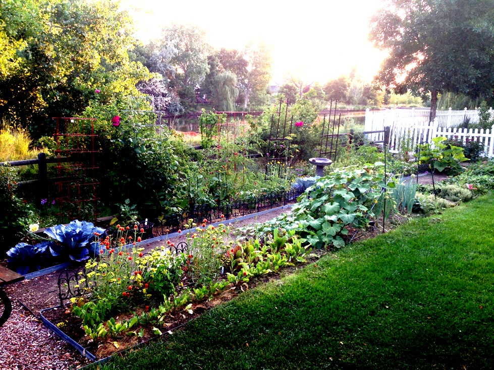 GardenIMG_0063
