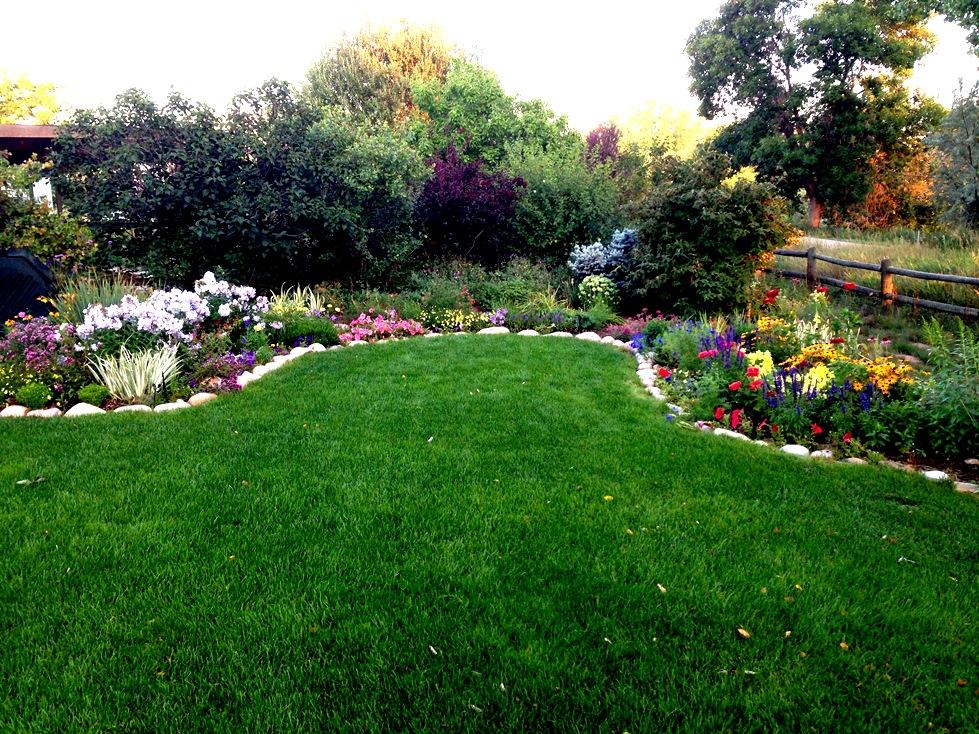 GardenIMG_0064