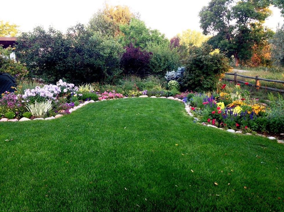 GardenIMG_0065