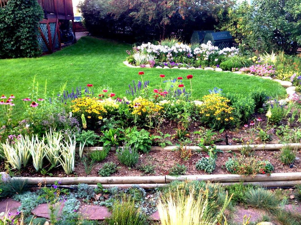 GardenIMG_0068