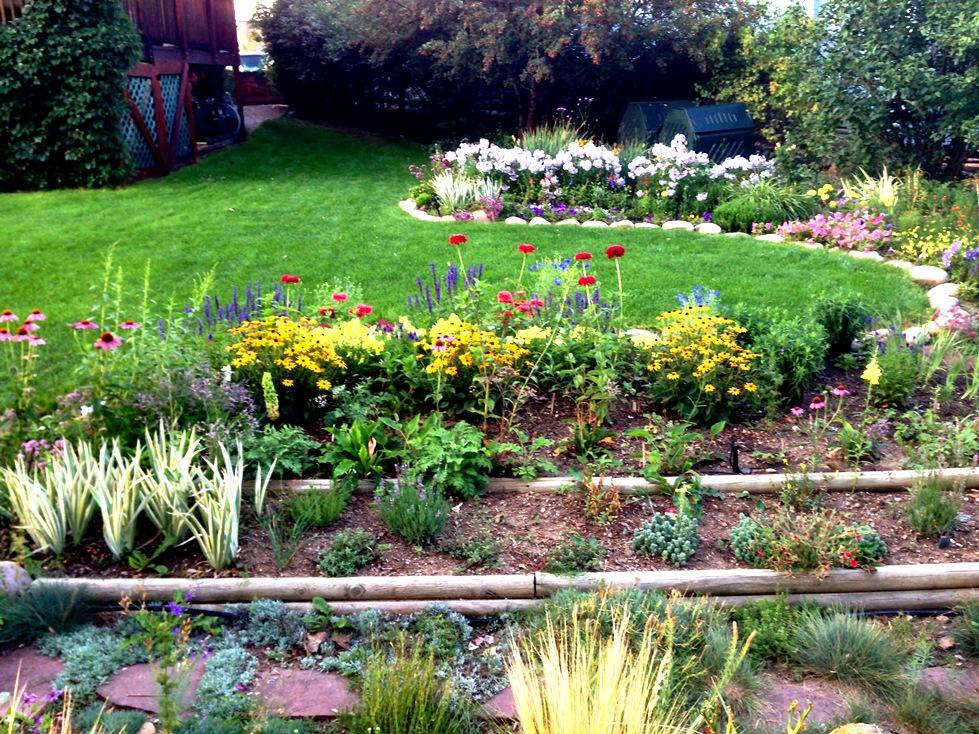 GardenIMG_0069