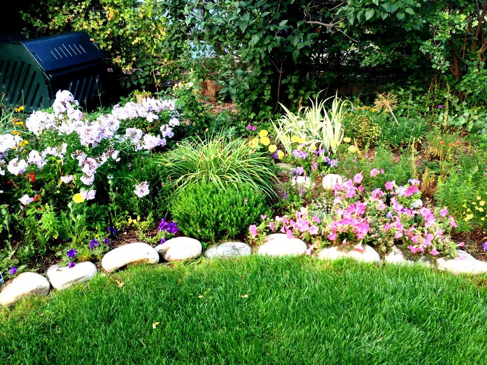 GardenIMG_0073