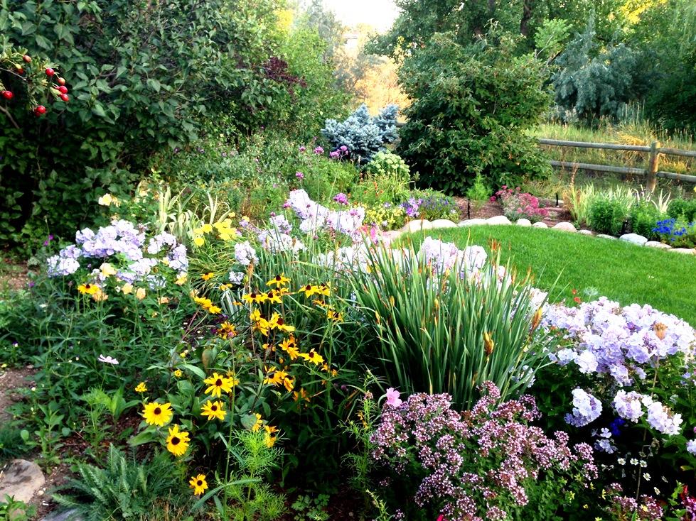 GardenIMG_0075