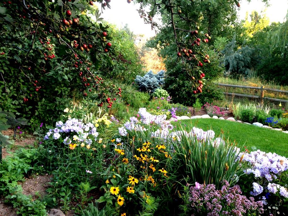 GardenIMG_0076