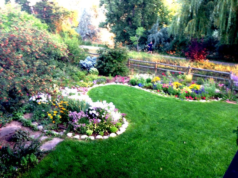 GardenIMG_0080