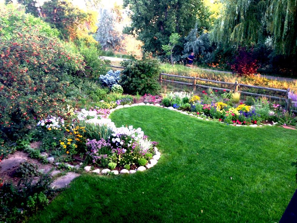 GardenIMG_0081